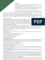 EL ESTUDIO DE LOS RESTOS MATERIALES - EVOLUCION HISTORICA  DEL HOMBRE