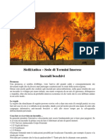SiciliAntica Incendio