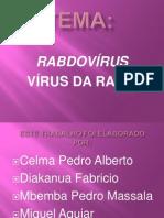 RABDOVIRUS. Power Point