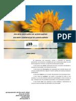 Projetos Educativo e Curricular Do Agrupamento 2011-13