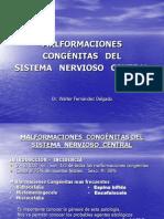 12. MALFORMACIONES  CONGÉNITAS DEL   SISTEMA  NERVIOSO  CENTRAL[1]