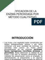 IDENTIFICACION DE LA ENZIMA PEROXIDASA POR MÉTODO CUALITATIVO