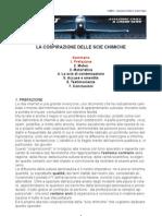 Imp PDF Scie Chimiche