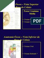 Anestesiologia Especialização
