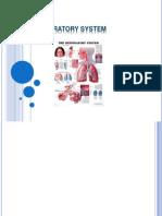 Respiratory System 5
