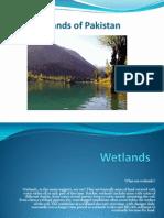 Wetlands of Pakistan