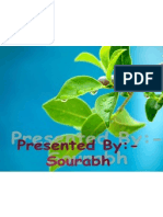 Green Resolution Saurabh