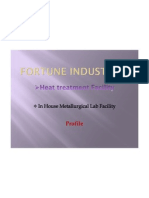 Fortune Industries Company Profile