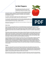 Bell Peppers.pdf