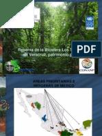 13. Reserva de La Biosfera de Los Tuxtlas