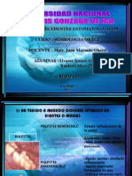 Antecedente Estomatologicos Semiologia Oral i Grupo 01