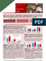 DER.peru Impactos 2010