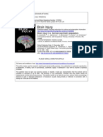 Brain Injury in a Forensic Psychiatry Population 2007