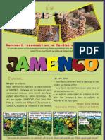 JAMENCO - Décembre 2011