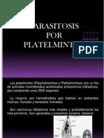 Parasitosis Por Platelmintos