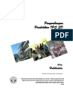 Pengembangan Pendidikan IPS SD