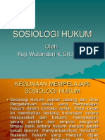 Sosiologi Hukum 1