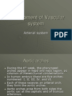 Development of Vascular System