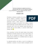 EVALUACIÓN DE LOS RIESGOS AMBIENTALES DE LA CAMPAÑA EXPLORATORIA DEL LEVANTAMIENTO SÍSMICO MARINO PENÍNSULA 3D AL NORTE DE PARIA