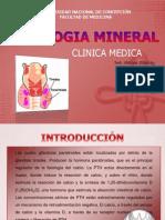 Patologia Mineral