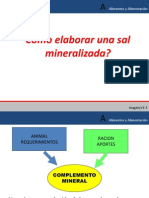 Como elaborar una sal mineralizada nutri.pptx
