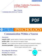1.2. Neurophysiology-Conduction, Transmission, And the Integration of Neural Signals (Slide Presentation)