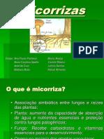 Micorrizas+ +Final