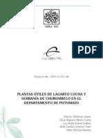 PlantasUtiles01