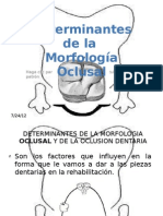 Oclusion_determimantes de La Morf Version Final