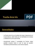 Trucha Arco Iris