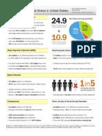 2011 USA Mental Illness Statistics / Overview