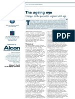 Ageing Eye Posterior Segment Changes