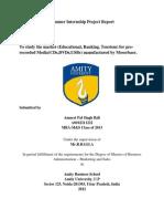 My Intern Report Amneet111111