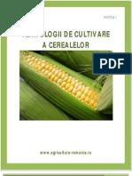 Tehnologii de Cultivare a Cerealelor