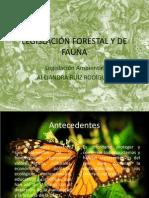 LEGISLACIÓN FORESTAL Y DE FAUNA