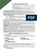 Anexo 1  Términos y condiciones generales RevSet2010 (2)