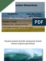 Ambientes Estuarinos