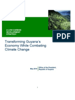 Low Carbon Development Strategy - May 2010
