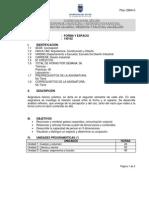 Programa Forma y Espacio2012