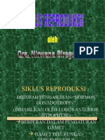 Siklus Reproduksi (1)