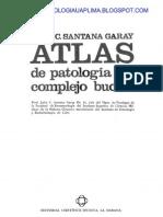 Atlas De Patología Del Complejo Bucal
