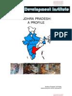 99664771 Andhra Pradesh Profile