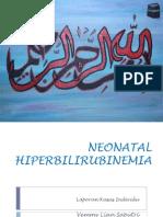 Vemmy - Neonatal Hiperbilirubinemia
