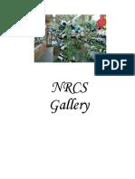 NRCS Gallery