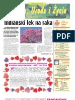 february_2007.pdf