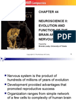 Evolution and Function of Brain and Cns and Pns