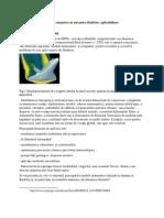 Metode Numerice in Mecanica Fluidelor, Aplicabilitate