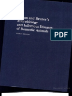 Microbiology and Infectious Diseases