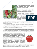 Manual de Tomate