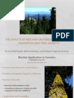 9 McElligott Biochar Biomass Conversion